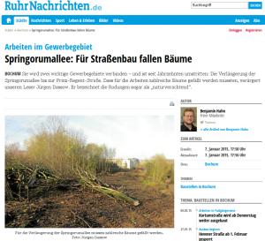 Ruhrnachrichten: Springorumallee - für Straßenbau fallen Bäume