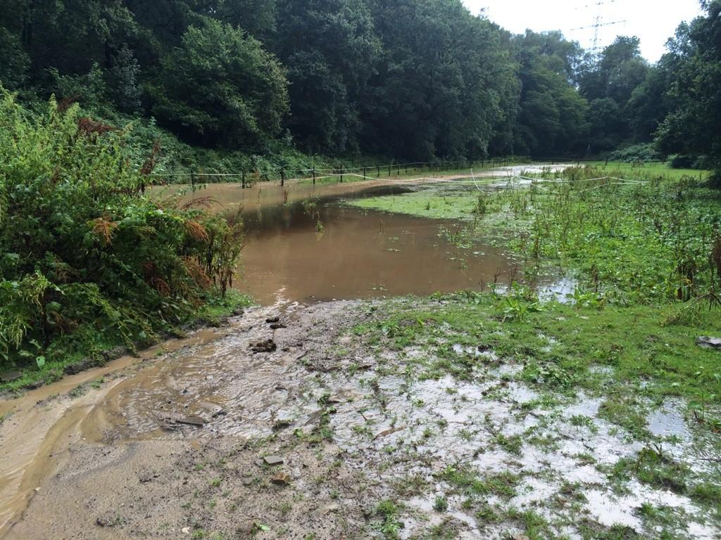 Überflutung1