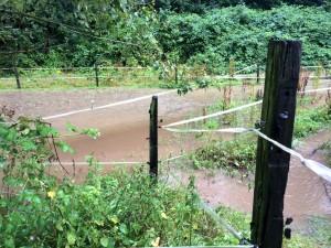 Überflutung2