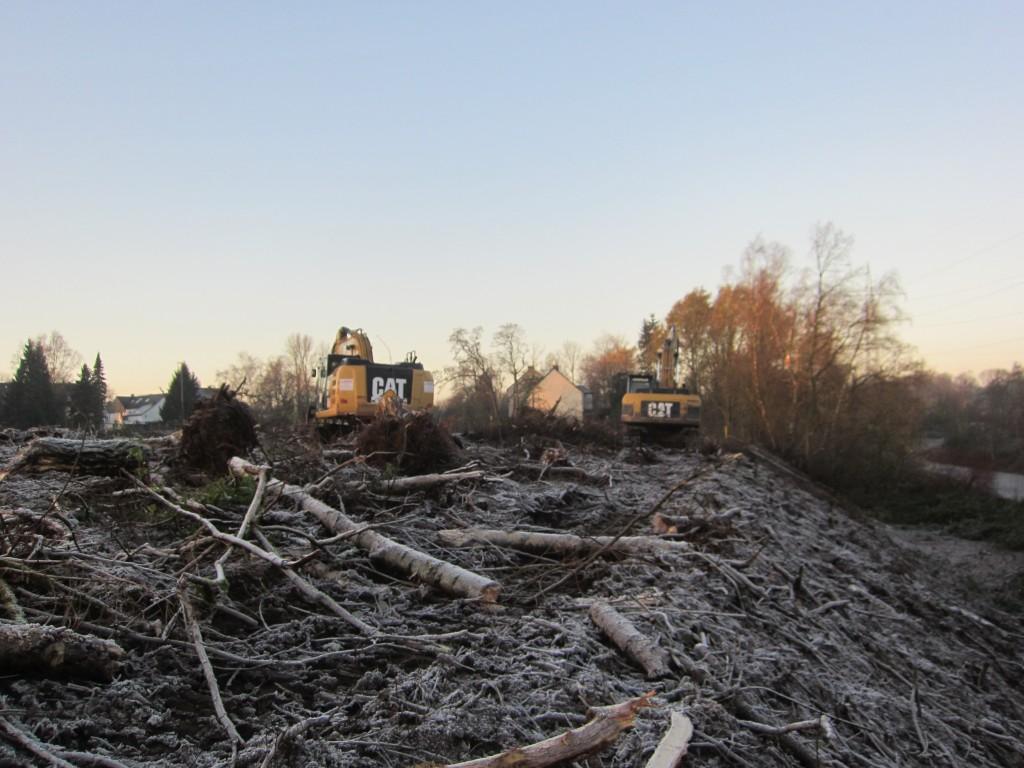 Hier stand einst der Nordwald - Teil einer Biotop-Verbundfläche und gemäß Bochumer Masterplan Freiraum, der nicht bebaut werden sollte. Im Bild rechts der Springorum-Radweg