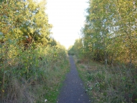 Weg neben dem ehemaligen Gleisbett